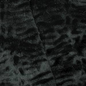 DFW56288