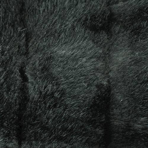 DFW56316
