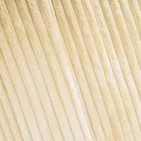 *2 YD PC -- Soft Beige Wide Wale Corduroy Home Decorating Fabric