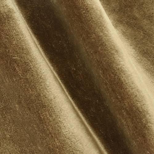 DFW58164