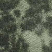 DFW59324