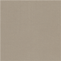 *2 YD PC--Golden Taupe Suiting