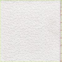 White Embroidered Mini Vine Lawn