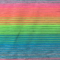 Grey/Multi Neon Stripe Jersey Knit