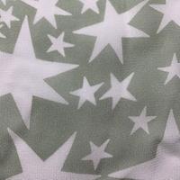 Sage/White Star Georgette