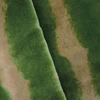 *1 1/2 YD PC--Green/Beige/Multi Camouflage Faux Fur