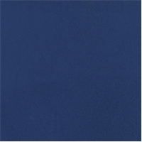 *4 YD PC--Double Sided Sweatshirt Fleece - Blue