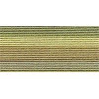 NMC460611