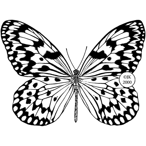 NMC460899