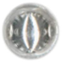 NMC477845