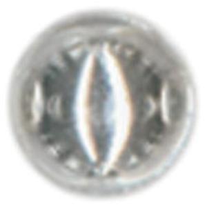 NMC477846