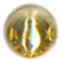 NMC477849