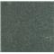 NT0101