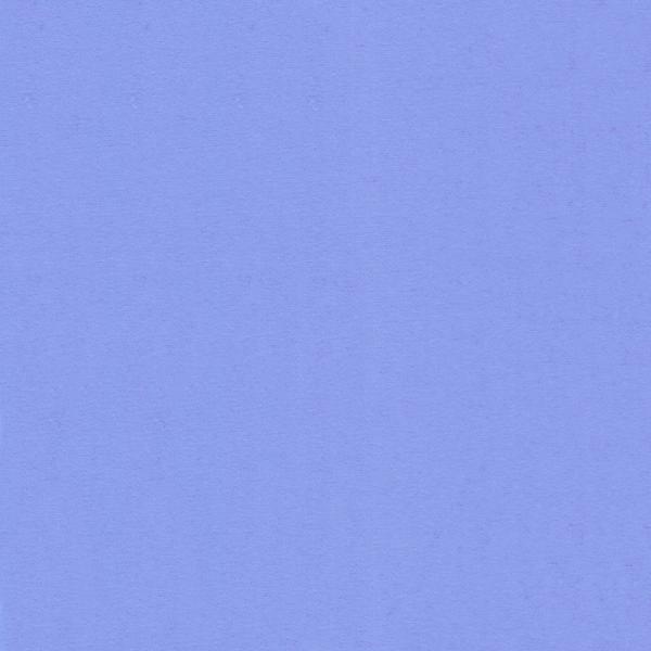 WVFV010
