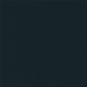 WVFV017
