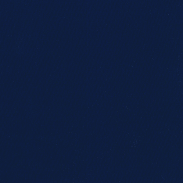 WVFV018
