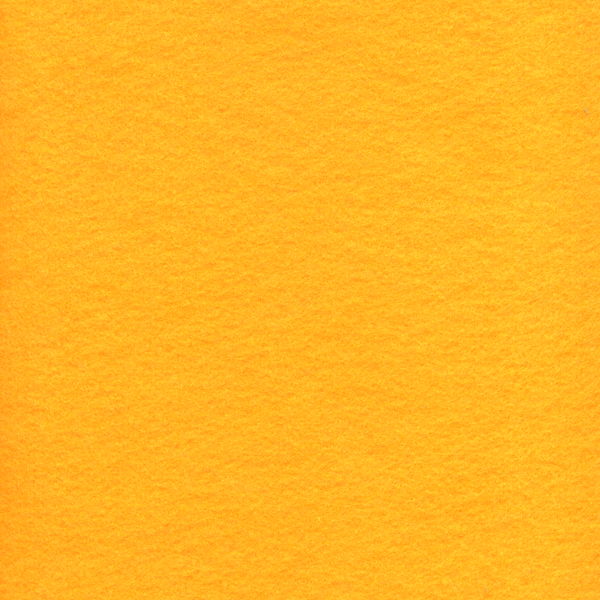 FT013