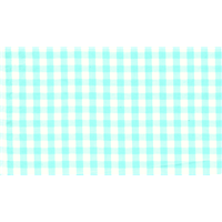 Mint 1|4 Inch Gingham Bolt – Apparel Fabric