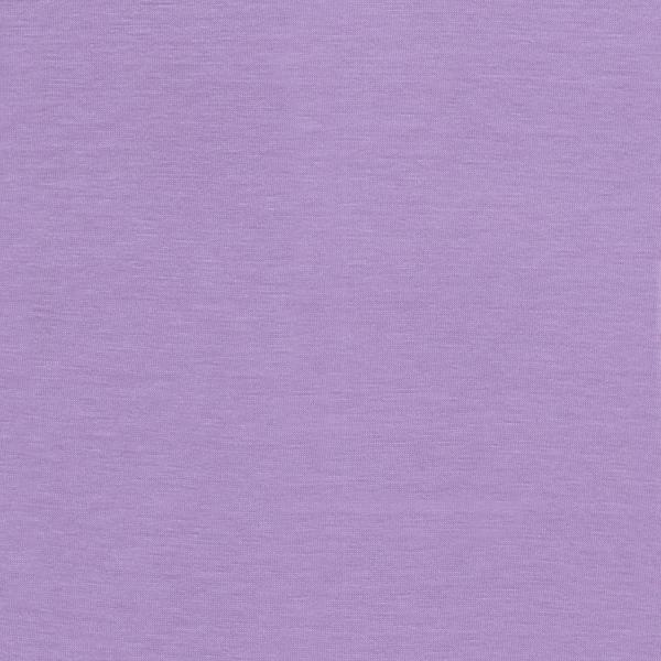 25058