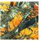 *1/2 YD PC--True Timber MC2 Blaze Orange
