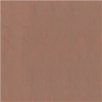 *4 YD PC--Golden Tan Tafetta