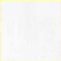 *5 5/8 YD PC--Shiny Ivory Rainwear