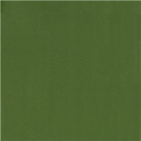 *1 1/8 YD PC--Grass Green Swimwear