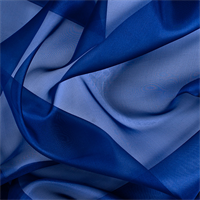 Dark Blue Silk Organza