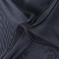Black Silk Organza