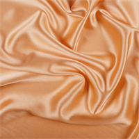Light Orange Silk Crepe Back Satin