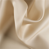Golden Tan Silk Satin Organza