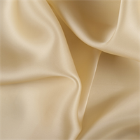 Gold Silk Satin Organza