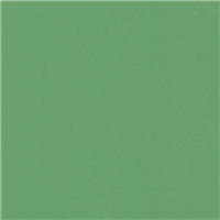 *1 5/8 YD PC--Spring Green Lining