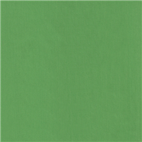 *3 YD PC--Bright Green Broadcloth