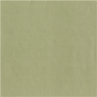 *1/2 YD PC--Celery Green Moleskin