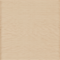 Light Beige Silk Dupioni – Apparel Fabric