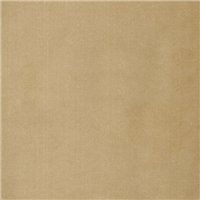 *2 YD PC--Tan Velvet