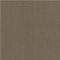 *4 1/4 YD PC--Taupe Suiting